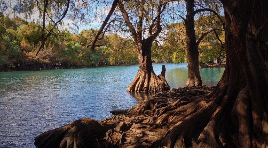 Wyprawa do magicznego Meksyku, jezioro camecuaro