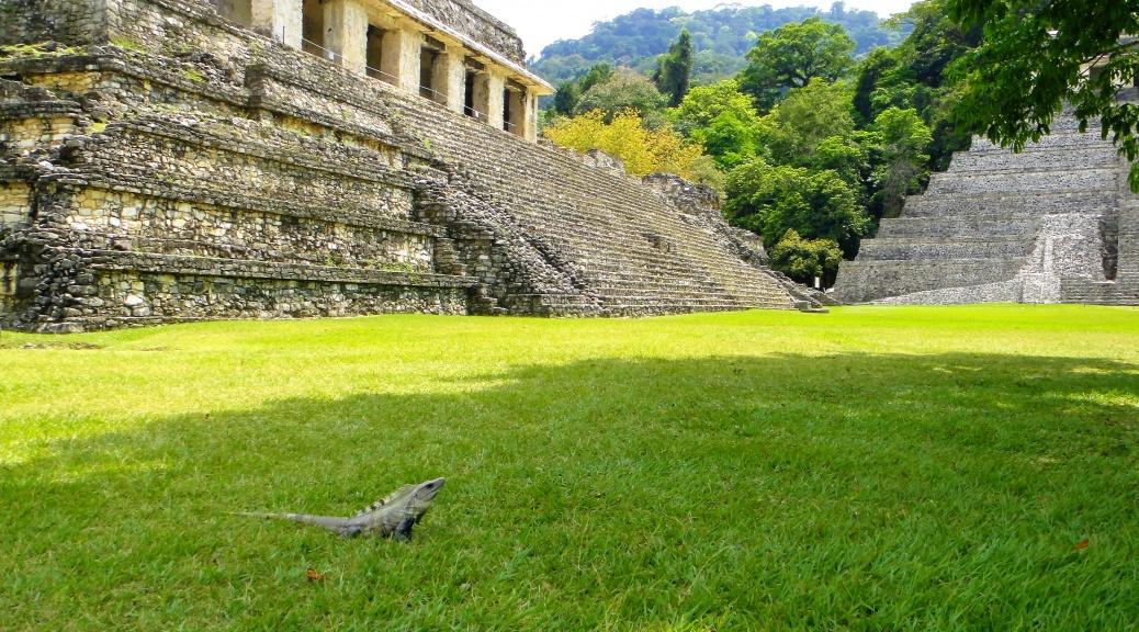 Wycieczka Meksyk Palenque