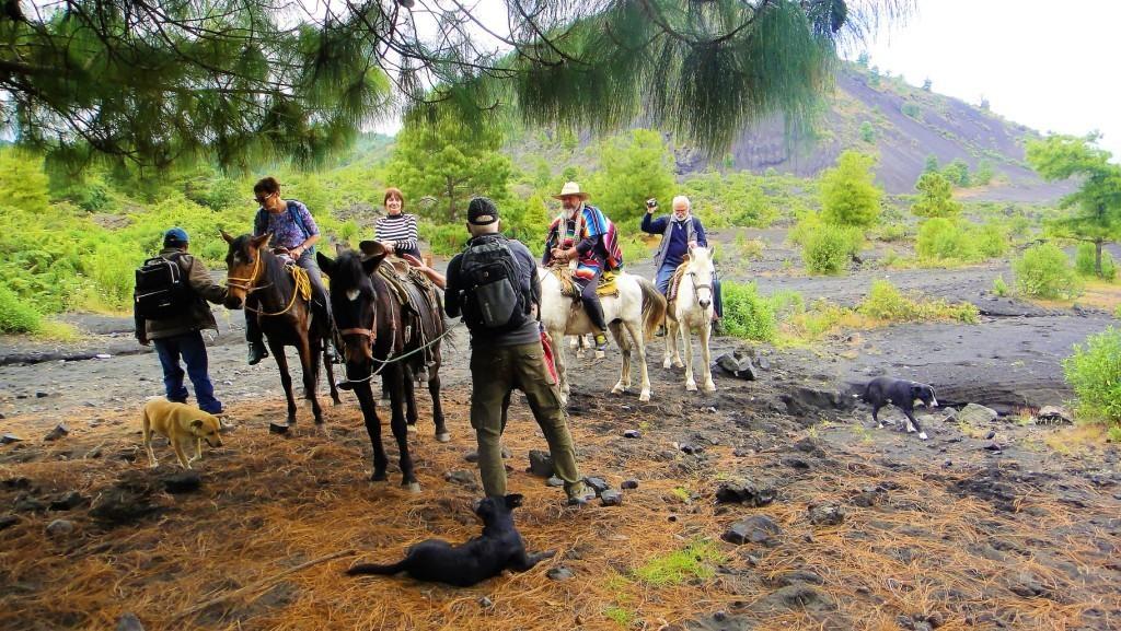 Konna wyprawa na wulkan w Meksyku